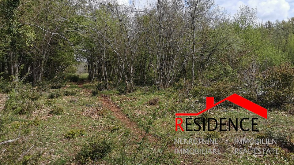 Land, 32290 m2, For Sale, Bale