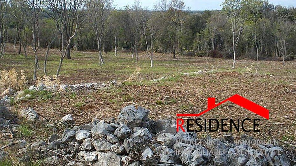 Zemljišče, 8196 m2, Prodaja, Medulin - Premantura