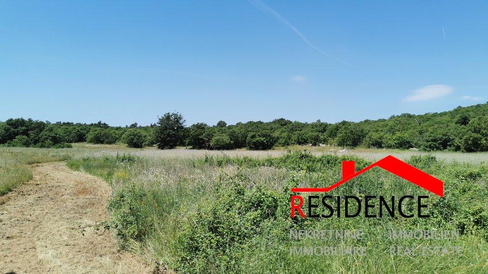 Zemljišče, 9619 m2, Prodaja, Bale