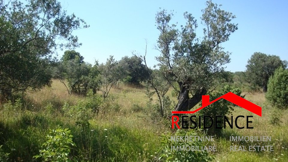 Land, 6600 m2, For Sale, Fažana