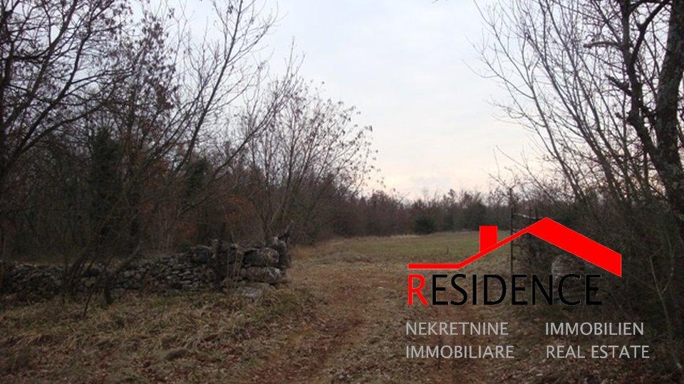 Grundstück, 60000 m2, Verkauf, Svetvinčenat