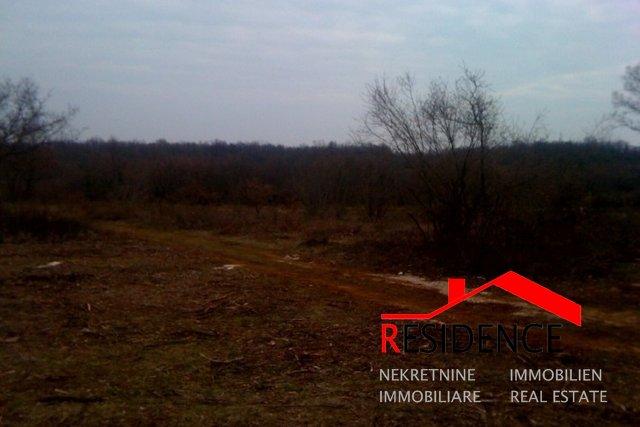Land, 15000 m2, For Sale, Peruški