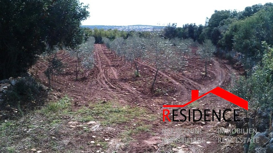 Land, 4340 m2, For Sale, Fažana