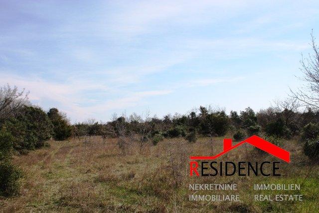 Land, 13006 m2, For Sale, Kavran