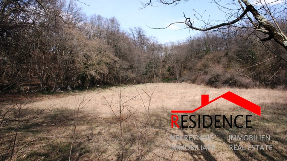 Land, 24000 m2, For Sale, Pinezići