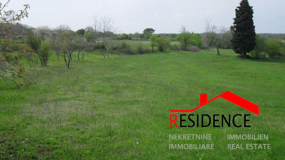 Land, 3737 m2, For Sale, Barban - Puntera