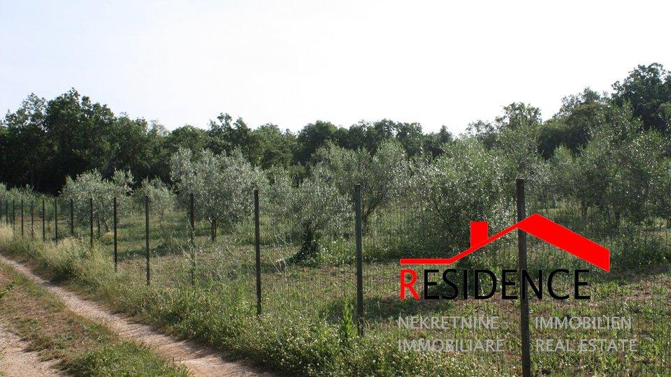 Land, 2937 m2, For Sale, Medulin