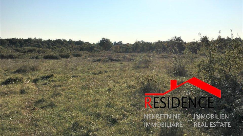 Zemljišče, 9531 m2, Prodaja, Vodnjan - Galižana
