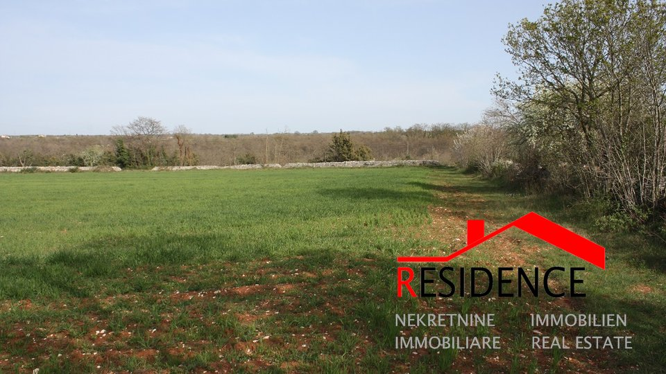 Land, 13055 m2, For Sale, Vodnjan