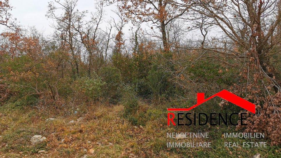 Land, 10962 m2, For Sale, Rovinjsko Selo