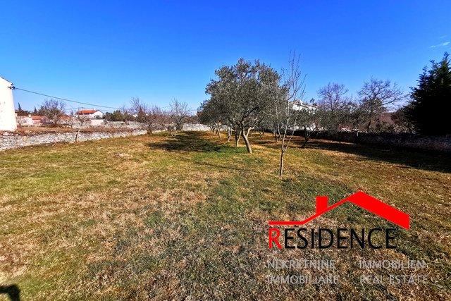 Land, 3538 m2, For Sale, Vodnjan