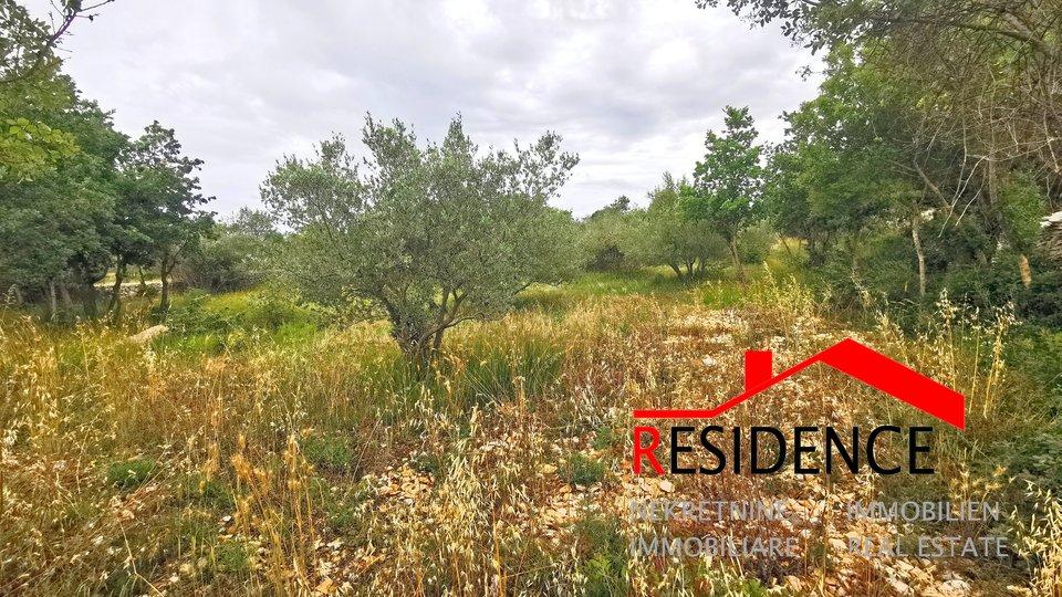 Land, 4503 m2, For Sale, Vodnjan