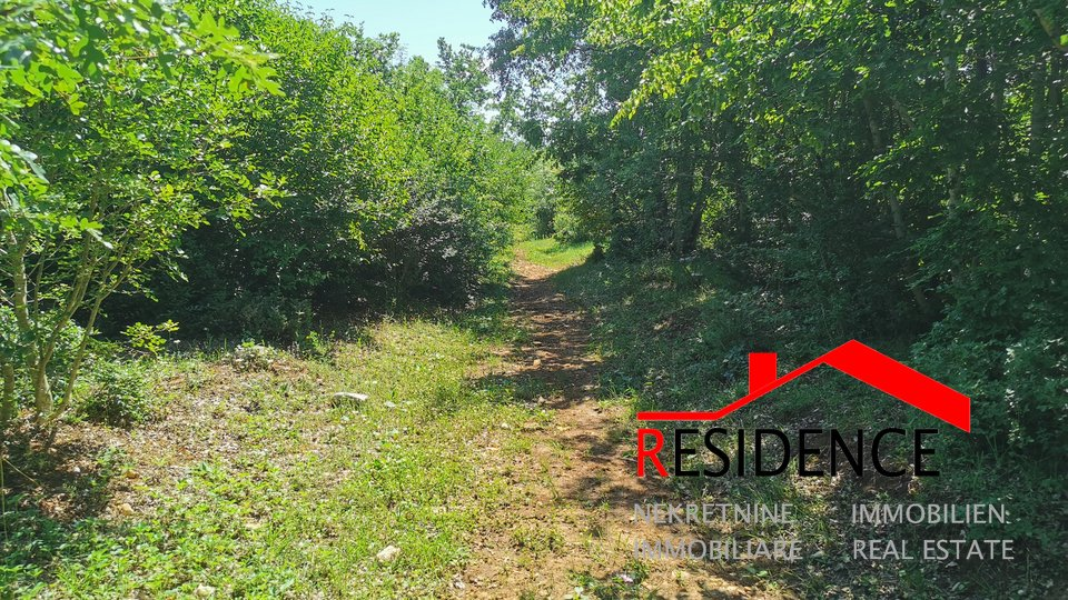 Land, 101120 m2, For Sale, Bale