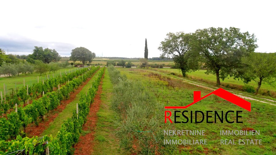 Land, 4520 m2, For Sale, Medulin