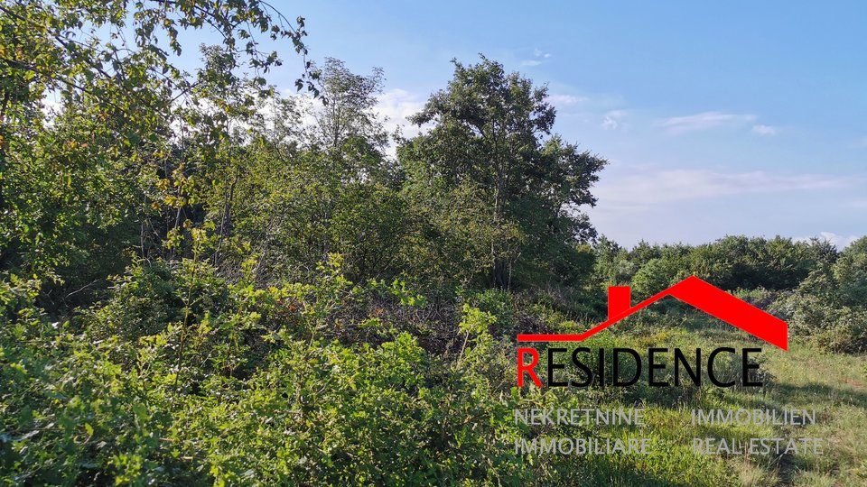 Land, 14310 m2, For Sale, Bale