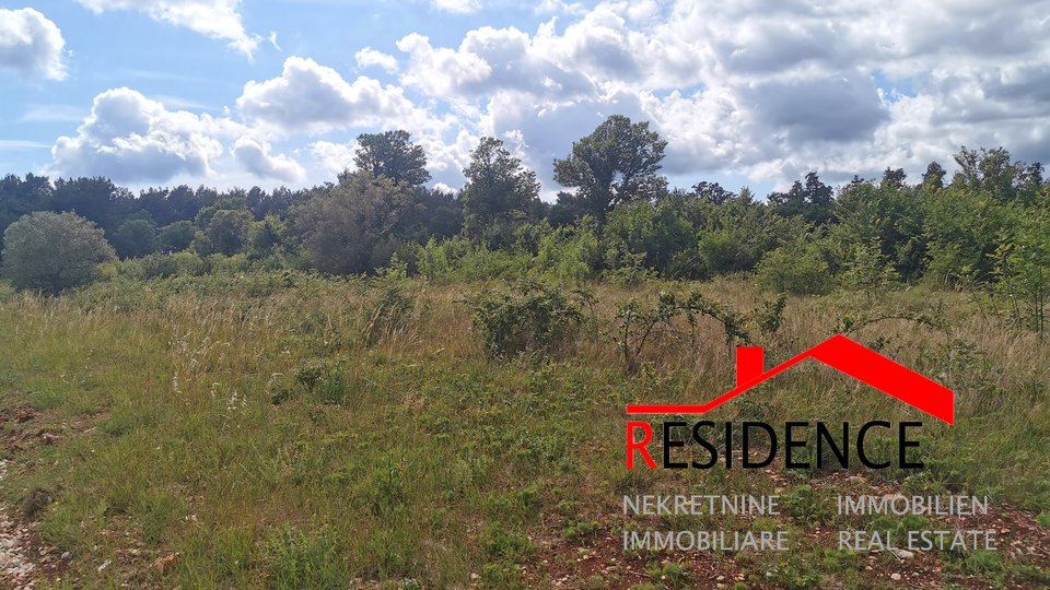 Land, 14245 m2, For Sale, Kanfanar - Kurili