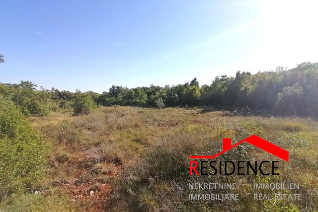 Land, 12132 m2, For Sale, Ližnjan - Valtura