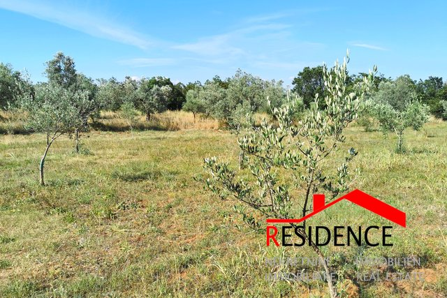 Land, 2830 m2, For Sale, Fažana