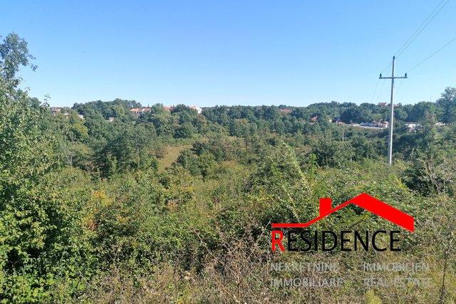 Land, 22502 m2, For Sale, Sveti Petar u Šumi