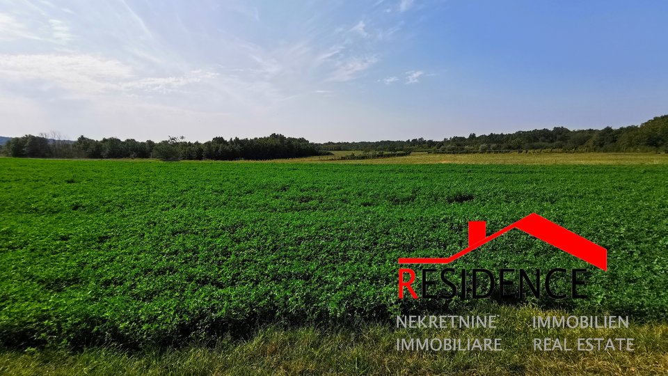 Land, 14941 m2, For Sale, Barban