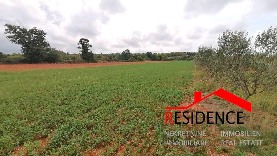 Land, 4230 m2, For Sale, Vodnjan